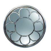 ozone silver