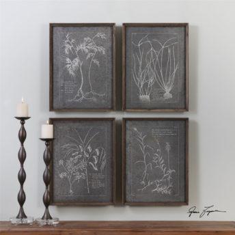 Root Study Image Wall Art 61cm ( Set of 4 )