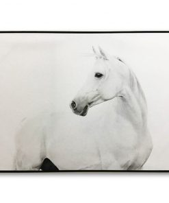 FW_Framed-White-Stallion-Canvas-Wall-Art-100cm-x-140cm_E533058