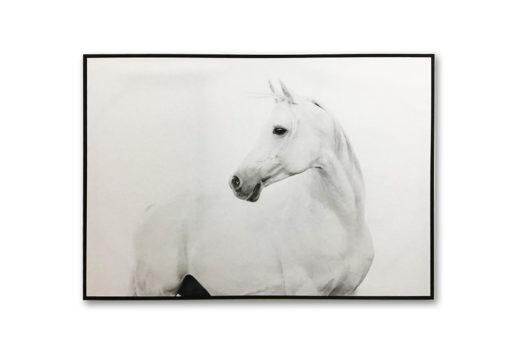 FW_Framed-White-Stallion-Canvas-Wall-Art-100cm-x-140cm_E533058