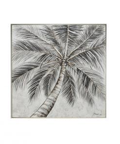 Arecaceae Grey
