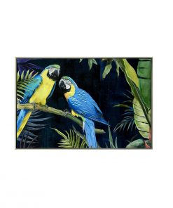 Blue Yellow Macaw Pair