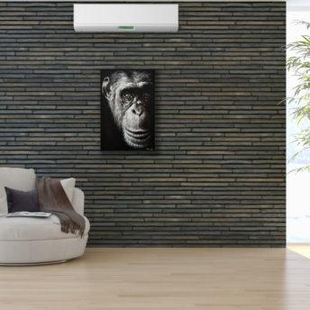 Wise Monkey Portrait Wall Art Canvas 80 cm X 120 cm