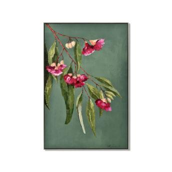 Native Australian Flower Wall Art Canvas 82.5 cm X 123 cm